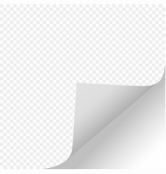scroll through the paper shadow page vector image