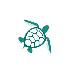 Sea turtle blue icon or symbol flat vector