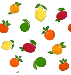 Seamless Pattern of Citrus Fruits vector