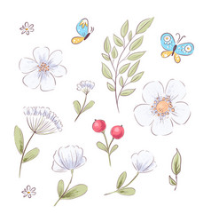 set wildflowers and butterflies hand drawing vector image