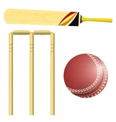 Items for cricket vector image vector image