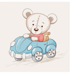 cute funny bear drive a car vector image