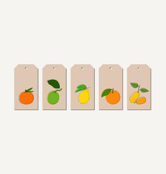 tag set with vintage hand drawn citrus vector image vector image