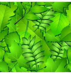Seamless with green spring leaves vector image vector image