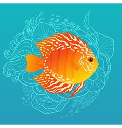 Sunny fish vector image vector image