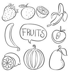 Collection fruit hand draw doodles vector