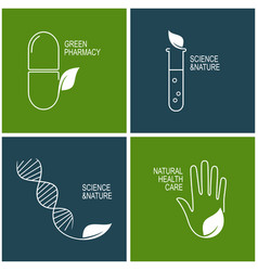 green pharmacy and herbal medicine icons vector image