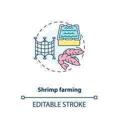 Shrimp farming concept icon vector