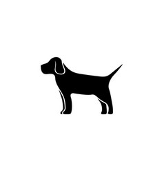 Thoroughbred hound hunting dog pet flat icon vector