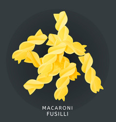 traditional italian kitchen macaroni fusilli vector image