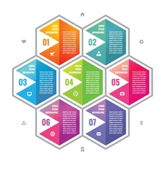 Business infographic concept colored hexagon block vector image vector image