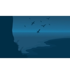 Silhouette of beach and birds vector image vector image