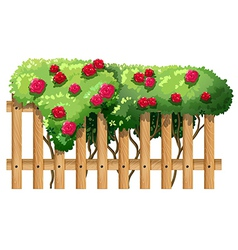 A fence with flowering plants vector image