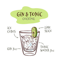 gin and tonic cocktail vector image