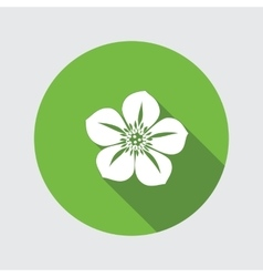Hellebore Caltha flower icons Spring floral vector