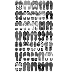 shoe prints vector image