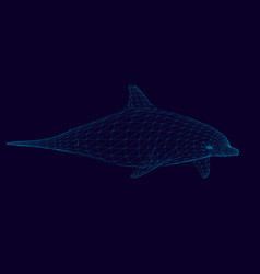 wireframe of the polygonal dolphin of blue lines vector image