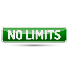 no limits - abstract beautiful button with text vector image vector image