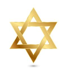 golden Magen David star of David vector image vector image