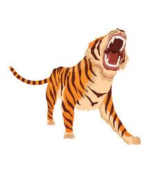 Adult big tiger angry animal from wildlife big vector
