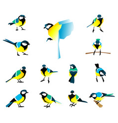 flat icons of titmouse set winter birds in a flat vector image