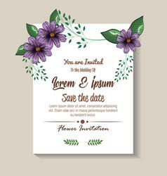 floral decoration flyers postcards vintage style vector image