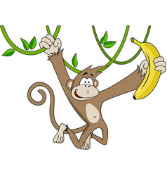 funny monkey with banana vector image