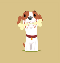 jack russell puppy character with bone in its vector image