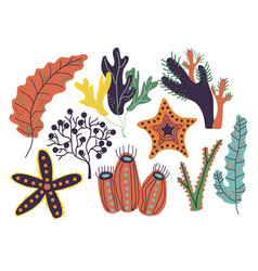 Seaweeds set marine or aquarium underwater plants vector