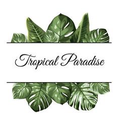 Tropical paradise top bottom frame exotic jungle vector