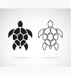 turtle design on a white background reptile vector image
