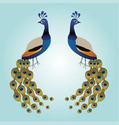 Two peacocks vector