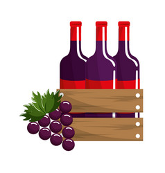 bottles of wine and grape fruit tasty vector image vector image