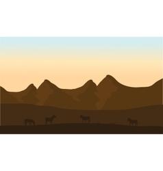 Silhouette of zebra in desert vector image vector image