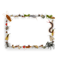 frame with insects cartoon parasites border vector image