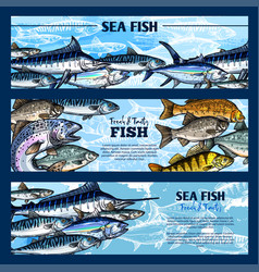 fresh fish seafood restaurant sketch banner set vector image