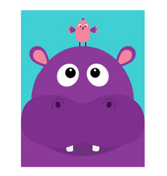 hippopotamus head facelooking up to bird cute vector image