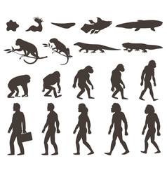 Human darwin evolution silhouettes set vector