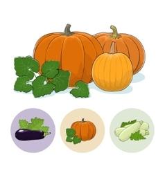 Icons Pumpkin Eggplant Zucchini vector image