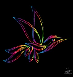 Image of an hummingbird vector