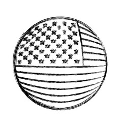 shield in circular shape with flag united states vector image