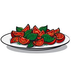 tomato salad with basil vector image