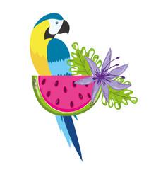 Tropical bird parrot cartoon vector