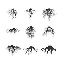 Tree and plant underground roots set vector