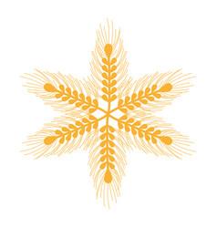 healthy wheat organ plants nutricious vector image