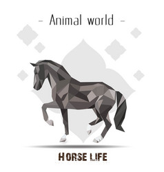 Animal world horse life polygon horse flower backg vector