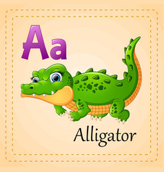 Animals alphabet a is for alligator vector