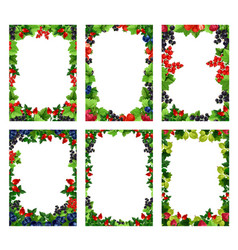 berry or fruit posters templates vector image