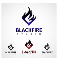 Black Fire Studio vector image