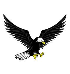 Flying bald eagle icon vector